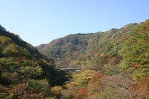 Kyushinetsu