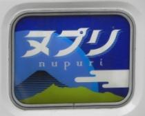 Nupuri_HM