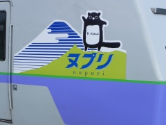 Nupuri_logo
